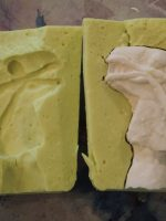 MPM_Alginate Molds