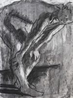 Additive and subtractive charcoal drawing