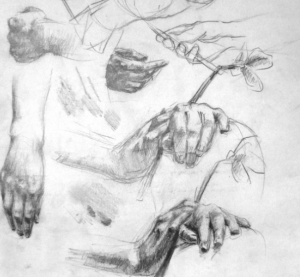 Tackling hands and feet in quick studies, by Hester Berry