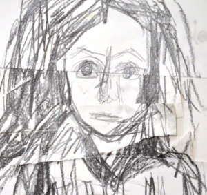 Pushing through difficulties and re-seeing your drawing, by Sheila Ceccarelli
