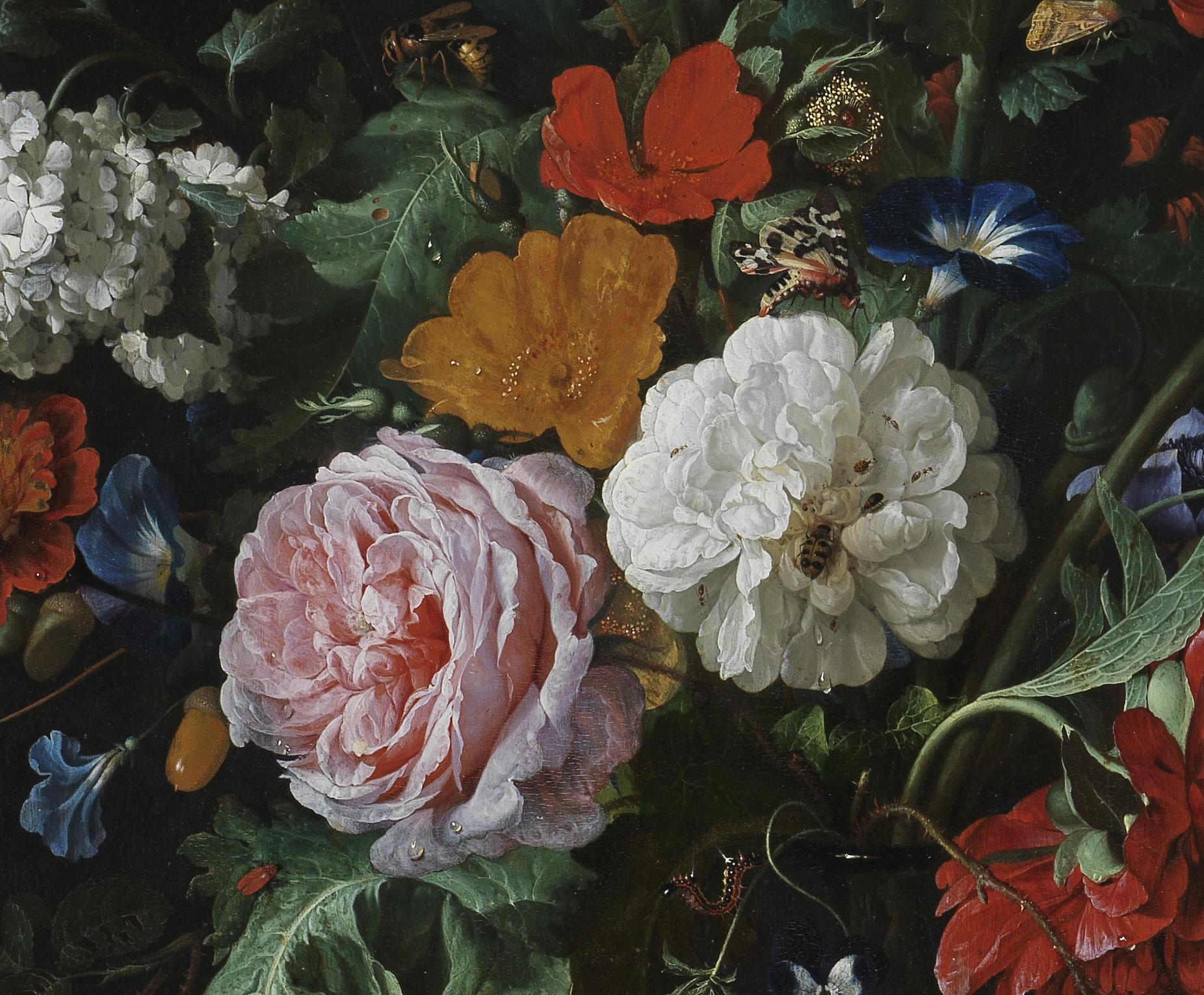 Detail from Flowers in a Glass Vase, by Jan Davidsz. de Heem (c) The Fitzwilliam Museum