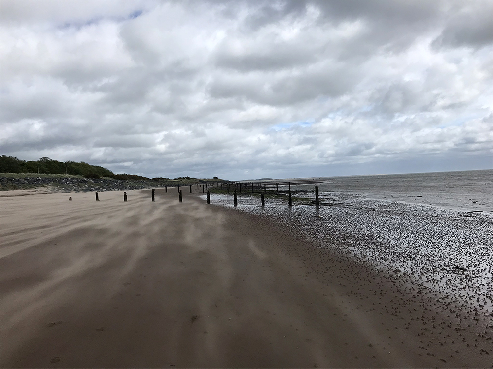 Groynes on Broughty Beach by Catherine Laing