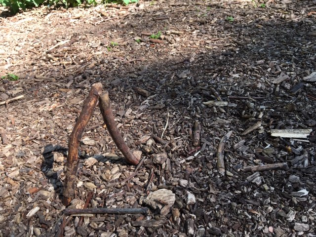 creating a free standing structure with twigs