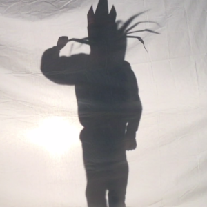 Shadow Puppet of King