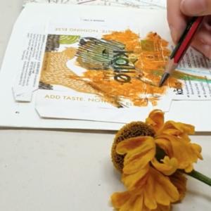 Making an Artist's Book by Paula Briggs
