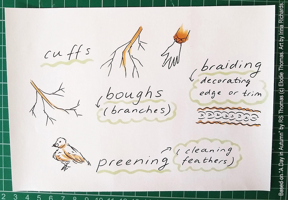 "Brainstorm planning. Based on the poem ""A Day in Autumn"" by RS Thomas (c) Elodie Thomas. Art by Irina Richards."