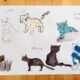 Drawings of cats by Inbal Leitner