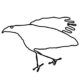 large_bird