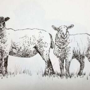 Use handwriting pen, sharpie or marker pen to make drawings which capture a sense of 3d form through mark making. Look at cross hatching too to help build areas of dark to help convey mood.