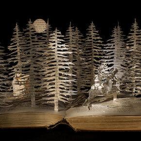 Book Artist and Set Design