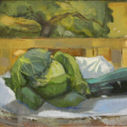 Atmospheric Still Lifes From Observation