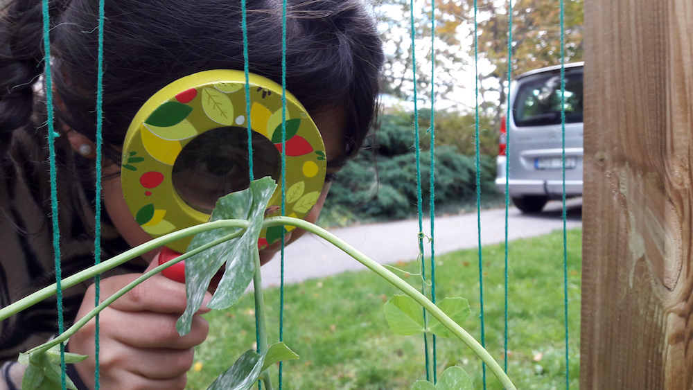 Using a Magnifying Glass Near The Weaving Frame by Mostyn De Beer